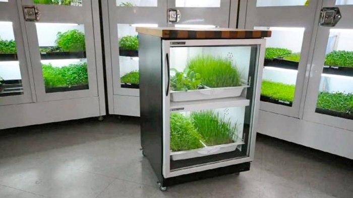 Оборудование выращивания в помещении 925